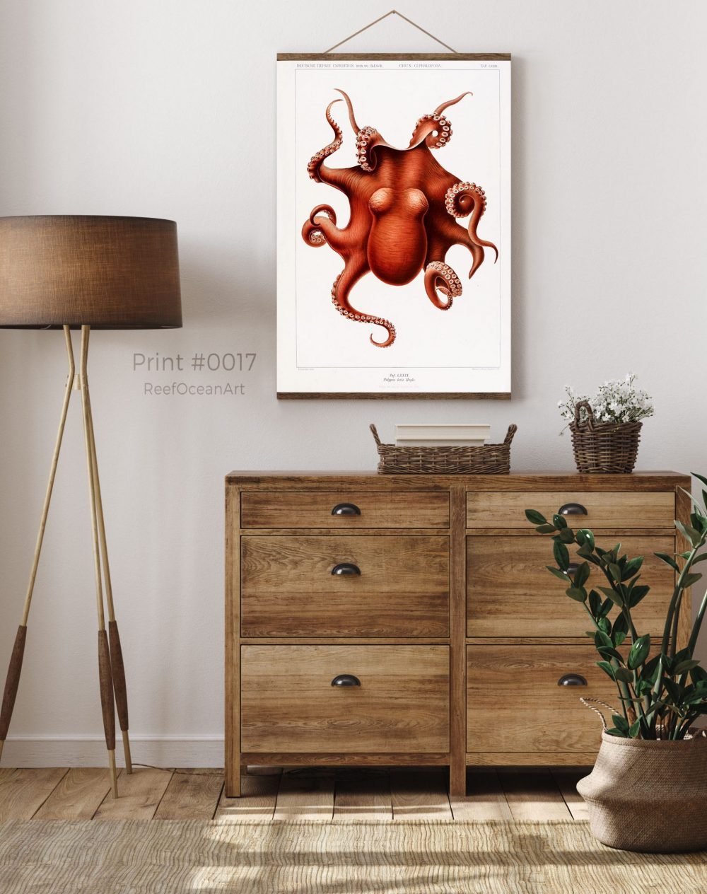 The Cephalopods, Vintage Giant Octopus, #0017
